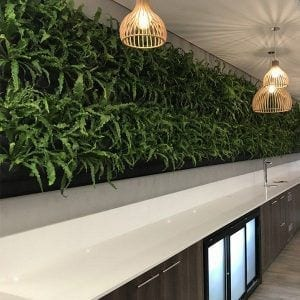 LivePanel Green Walls