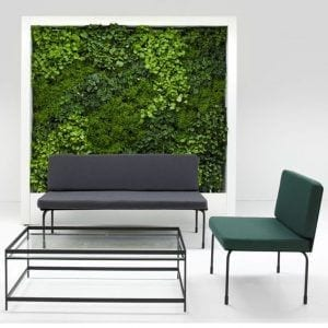Lemon Free Standing Green Wall